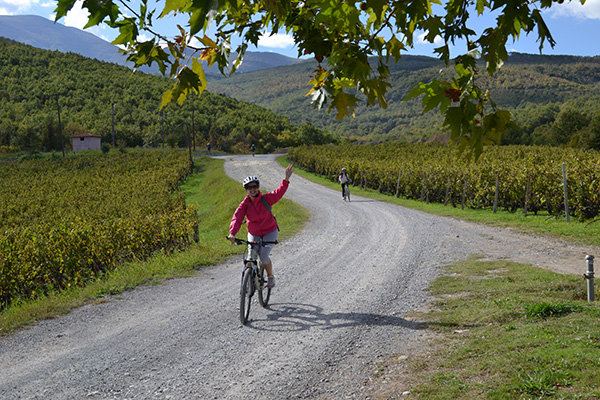 wineofgreece_bike_wine_tour
